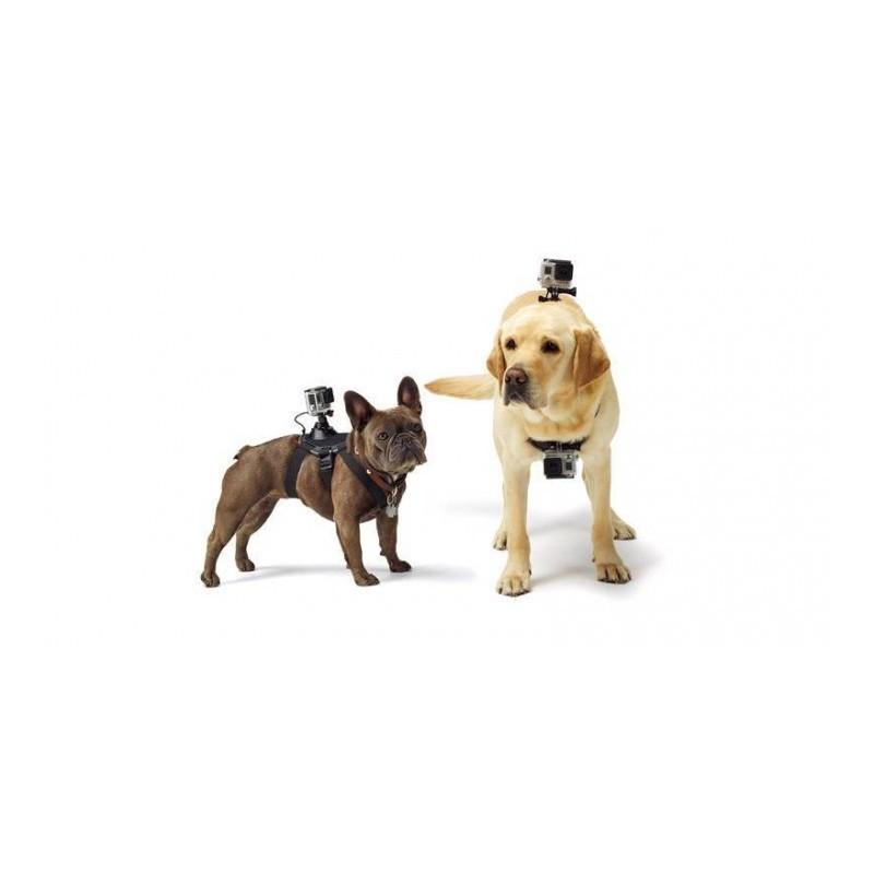 harnais pour chien avec fixation gopro. Black Bedroom Furniture Sets. Home Design Ideas