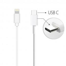 Câble USB C vers Lightning